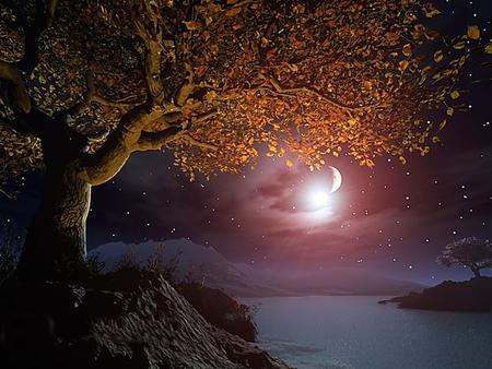 Ay'ı Tanımak